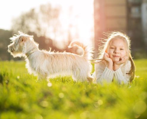Tierversicherung: Ein kleines Mädchen liegt mit dem Bauch auf der Wiese und ihr Hund ist bei Ihr. Mit der Tierversicherung ist ihr Tier bestens versorgt.